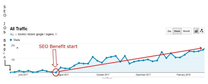Example of Seo effects start